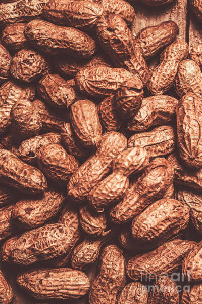 Foodstuff Photograph - Rustic Nuts Background  by Jorgo Photography - Wall Art Gallery