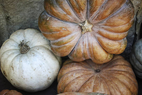 Photograph - Rustic Pumpkins by Joan Carroll