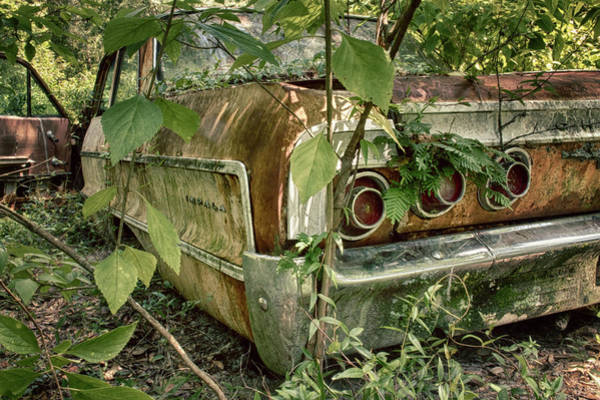 Photograph - Rustic Rear by Travis Rogers