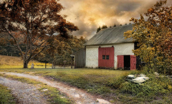 Red Robin Photograph - Rustic Red by Robin-Lee Vieira