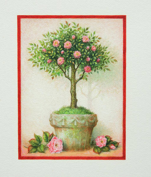 Painting - Rustic Topiary by Lynn Bywaters