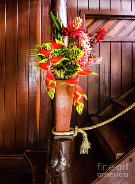 Cahuita Photograph - Rustic Tropical Arrangement by Norma Brandsberg