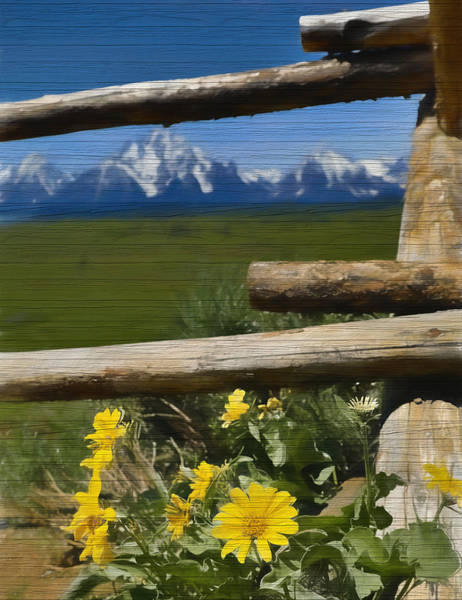 Fence Mixed Media - Rustic Wildflowers And Tetons by Dan Sproul