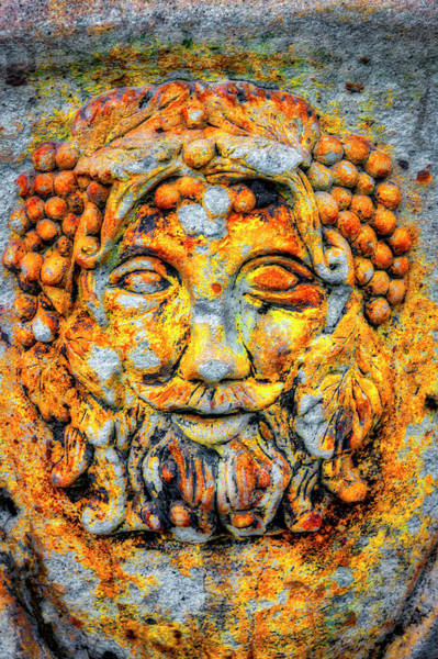 Wall Art - Photograph - Rustic Wine Country Face by Garry Gay