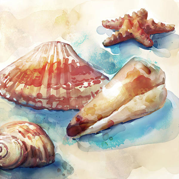 Wall Art - Painting - Rustshells by Mauro DeVereaux