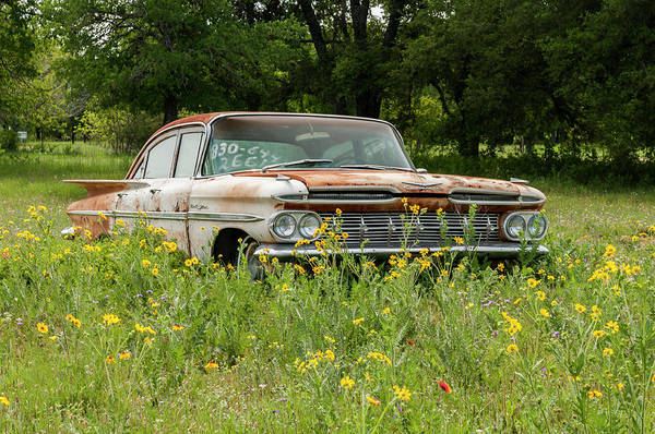 Photograph - Rusty But Still Standing In Texas by Usha Peddamatham