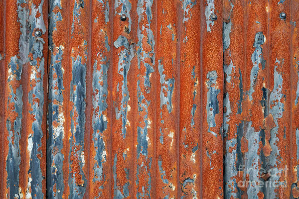 Tin Roof Wall Art - Photograph - Rusty Corrugated Tin by Tim Gainey
