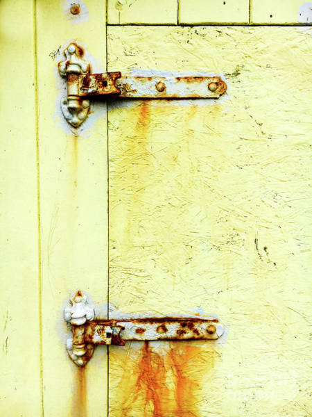 Wall Art - Photograph - Rusty Door Hinges by Tom Gowanlock