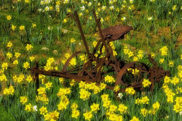 Wall Art - Photograph - Rusty Farm Equipment by Garry Gay