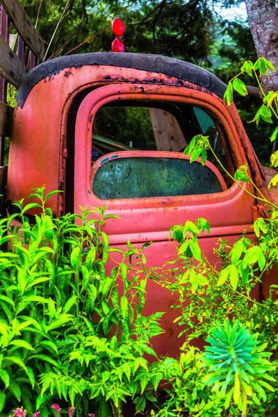 Wall Art - Photograph - Rusty Garden Truck by Garry Gay