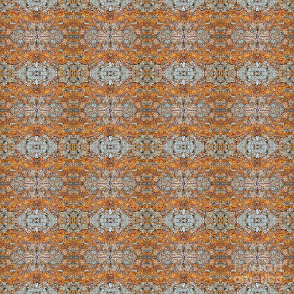Digital Art - hinesii 'Rusty Lace' by Jimmy Hines
