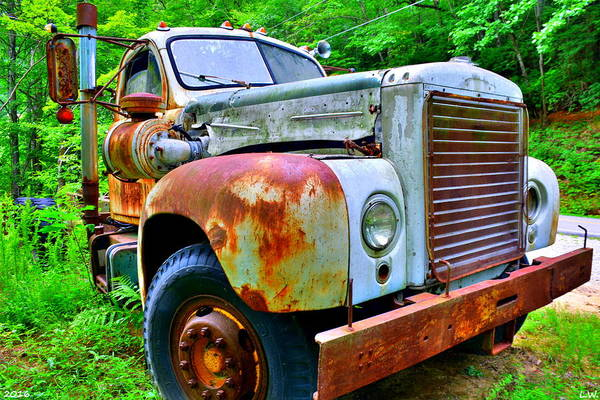 Photograph - Rusty Old Truck by Lisa Wooten