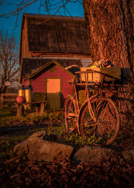 Photograph - Rusty Ride by Brad Koop