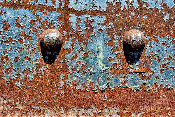 Wall Art - Photograph - Rusty Rivets by Olivier Le Queinec