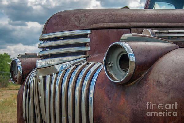 Photograph - Rusty by Tony Baca