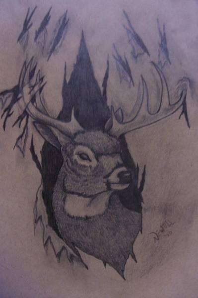 Whitetail Drawing - Rut Rage by Chris Newell