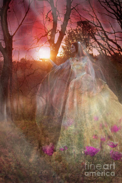Wall Art - Photograph - Spectre Bride by Angel Ciesniarska