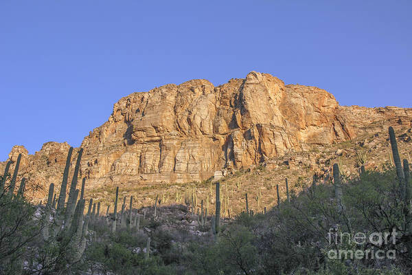 Photograph - Sabino Canyon Wall 1 by Jemmy Archer