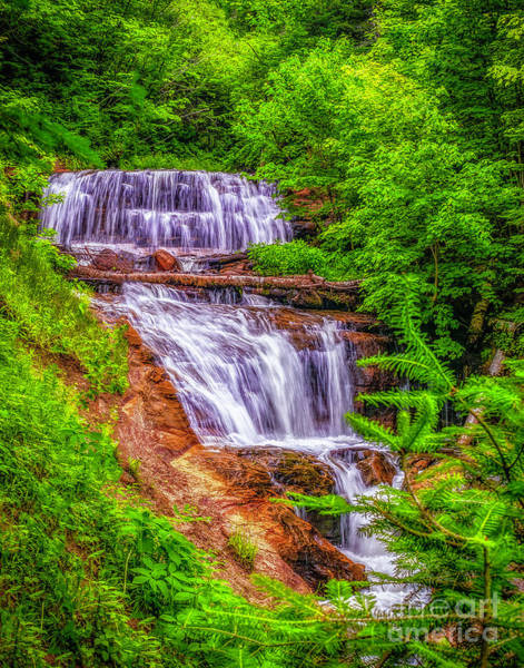 Photograph - Sable Falls by Nick Zelinsky