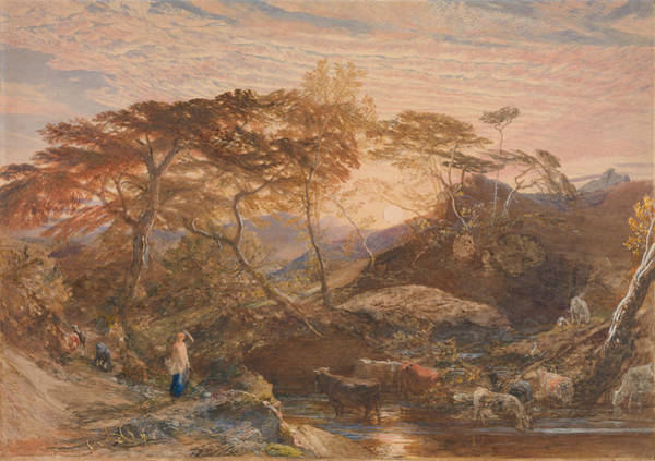 Drawing - Sabrina by Samuel Palmer