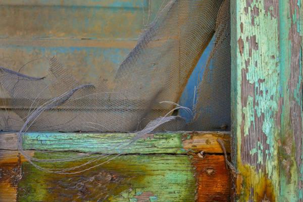 Photograph - Sachet by Skip Hunt