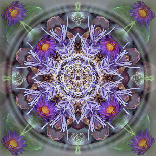 Digital Art - Sacred Emergence by Alicia Kent