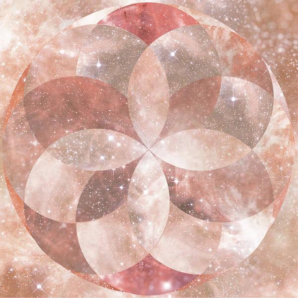 Universe Digital Art - Sacred Geometric Flower by Lori Menna
