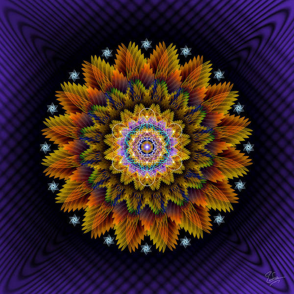 Digital Art - Sacred Geometry 546 by Endre Balogh