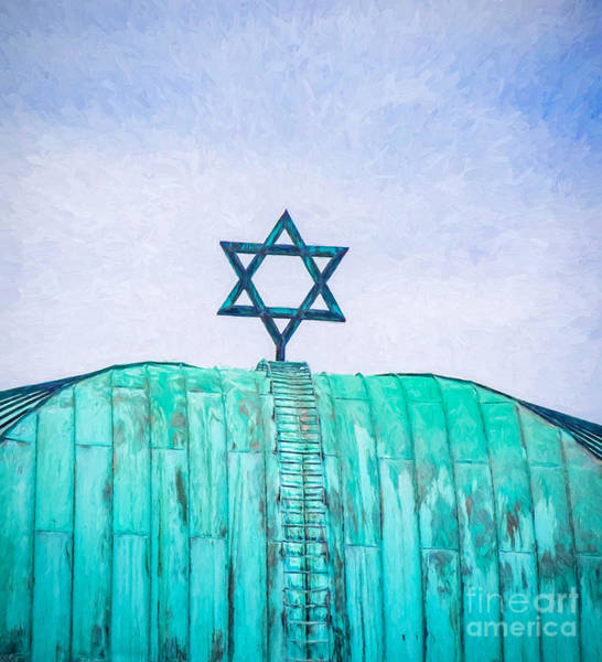 Photograph - Sacred Star by Robin Zygelman