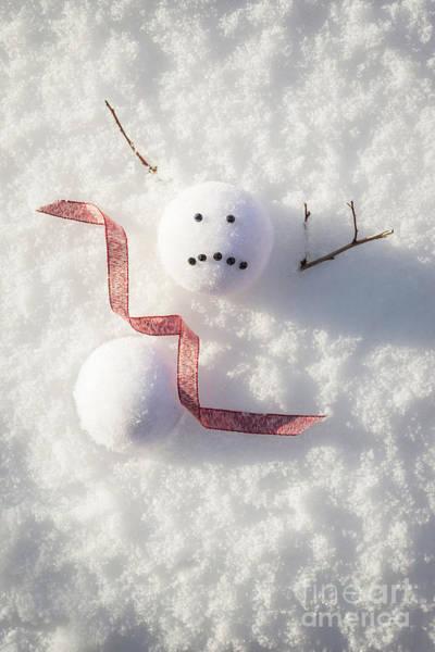 Wall Art - Photograph - Sad Melted Snowman by Amanda Elwell