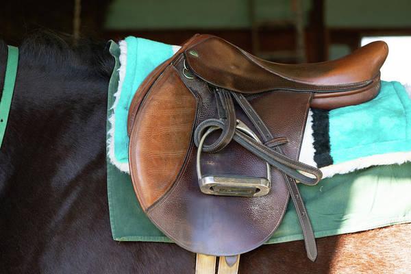 Photograph - Saddle  by Joseph Caban