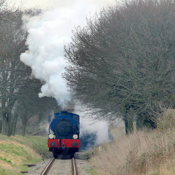 Photograph - Saddle-tank Locomotive Puffing Uphill by Tony Mills