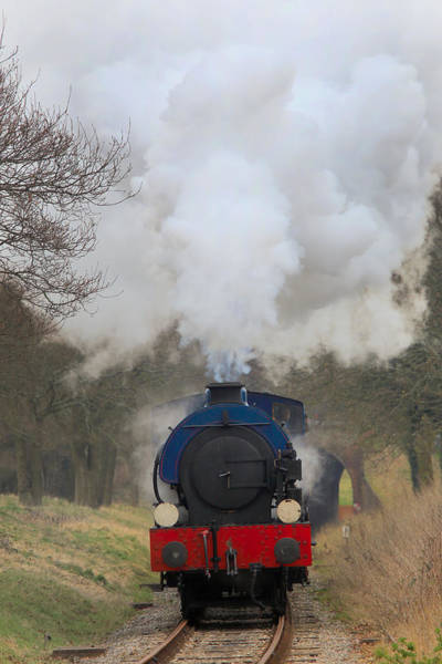 Photograph - Saddle-tank Locomotive by Tony Mills