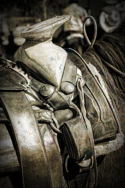 Photograph - Saddle Up by Barry Weiss