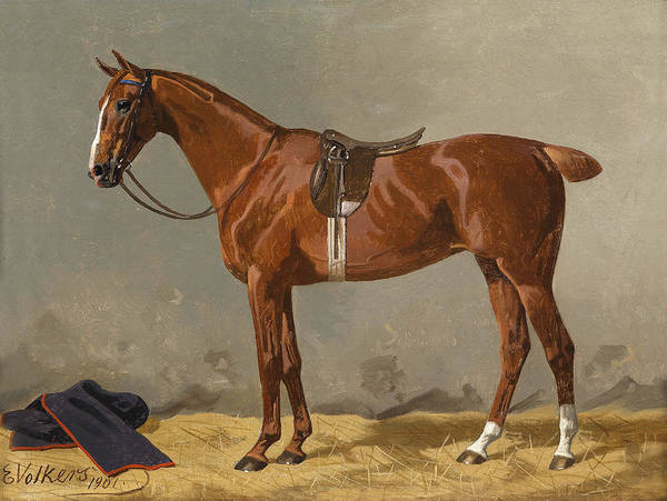 Wall Art - Painting - Saddled Sport Horse 1 by Emil Volkers