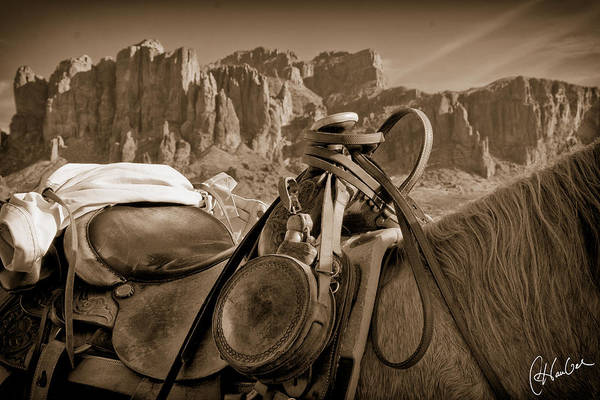 Pferd Photograph - Saddled Up Near Superstition Mountains by Christine Hauber