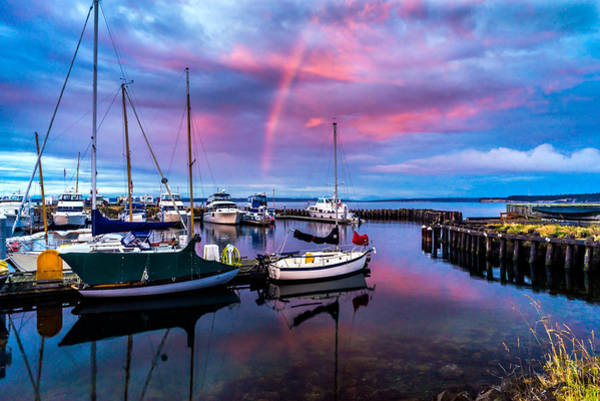 Photograph - Safe Harbor by TL  Mair