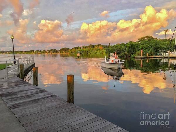 Photograph - Safety Harbor Fisherman  by Jacqueline Faust