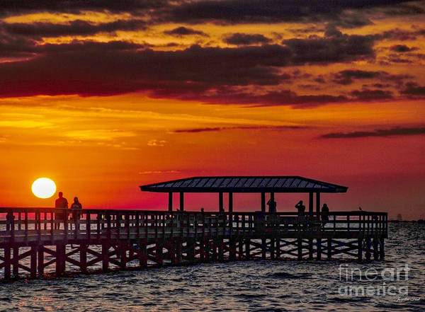 Photograph - Safety Harbor Sunrise by Jacqueline Faust