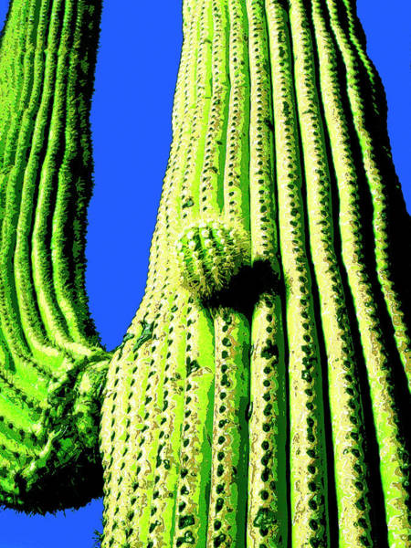 Cactus Mixed Media - Saguaro by Dominic Piperata