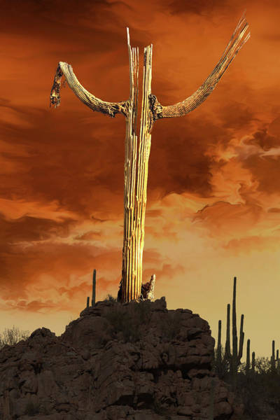 Photograph - Saguaro Sculpture by Mike Stephens