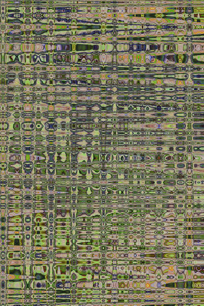 Wall Art - Photograph - Saguaro Skin Abstract, #2 by Tom Janca