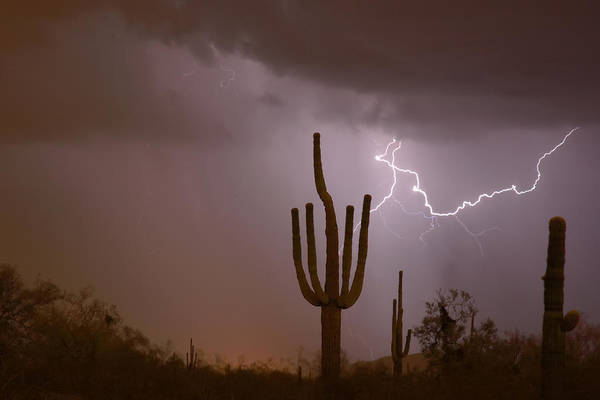 Photograph - Saguaro Southwest Desert Lightning Air Strike  by James BO Insogna