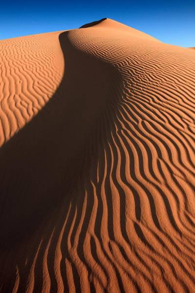 Photograph - Sahara Textures by Peter OReilly