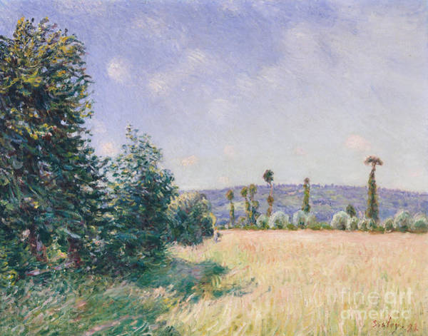 Wall Art - Painting - Sahurs Meadows In Morning Sun, 1894 by Alfred Sisley