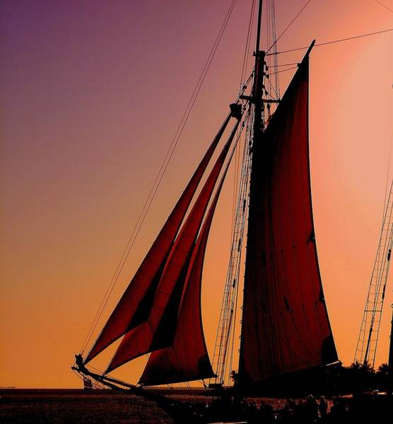 Photograph - Sail At Sunset by Susanne Van Hulst
