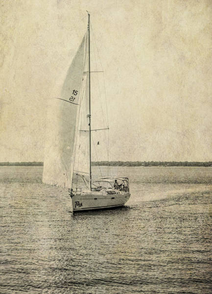 Photograph - Sail Away by Michael Colgate