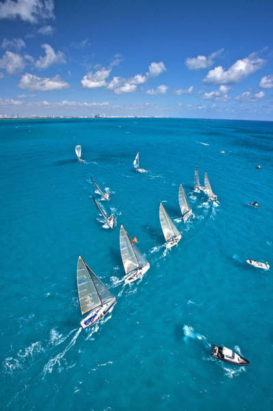 Photograph - Sail Miami by Steven Lapkin