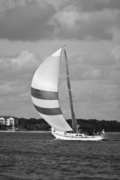 Spinnaker Photograph - Sail Power by Dustin K Ryan