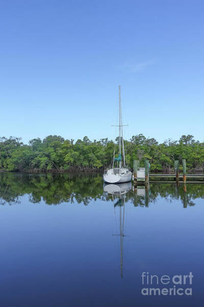 Wall Art - Photograph - Sailboat At Dock Florida by Edward Fielding